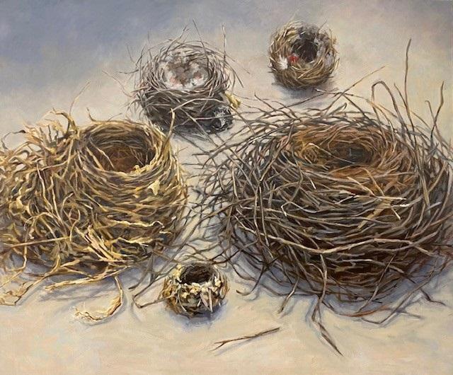 Habitat 105 – five nests