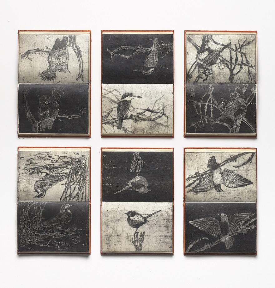 false ornithology, the mungo diaries