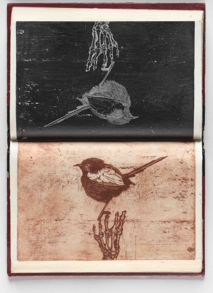 false ornithology IX