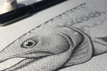 Angus Fisher – The Devonian Billabong Drawing workshops with Todd Fuller